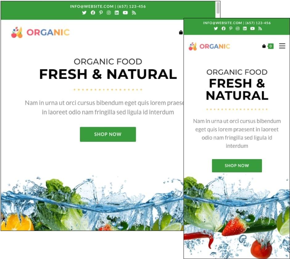 OceanWP Organic Theme
